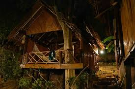 our tree house picture of viking natures resort ko phi phi don