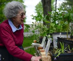 native plant restoration farmstead calls attention to benefits of native plants indiana