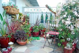 Patio Container Garden Ideas Looking For Container Gardening Ideas