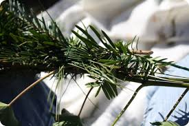 how to make evergreen garland or swags