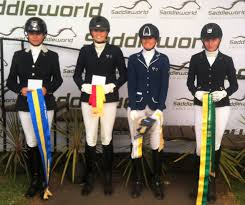 General Power Of Attorney Qld by 2015 Saddleword Dressage Festival Para Equestrian Individual