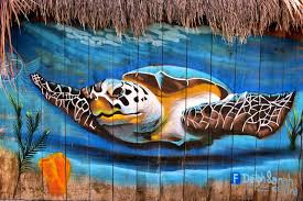 world murals two encircle photos hawksbill sea turtle mural near san miguel cozumel mexico
