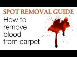 How To Get Silly Putty Out Of Carpet Best 25 Blood Out Of Clothes Ideas On Pinterest Blood Removal
