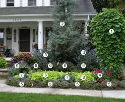 designing with annuals fine gardening