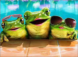 graphics for funny frog happy birthday graphics www graphicsbuzz com