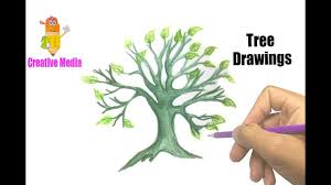 beautiful tree drawings coloring pages kit videos drawings of