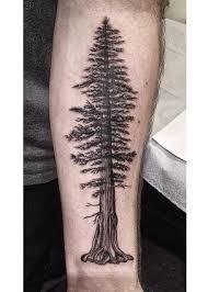 pine tree tattoos search tatts galore