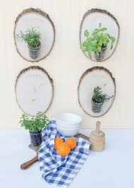 find the best indoor herb garden for any space garden therapy