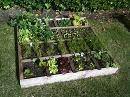 square foot gardening flowers mini farming grow healthy