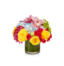 same day floral delivery same day flower delivery h bloom h bloom