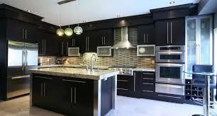 Kitchen Cabinet Interior Organizers Shocking Design Of Kitchen Cabinets Ikea Cost Under Kitchen