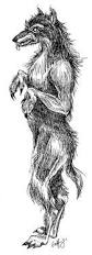 real wolfmen beast of bray road werewolves dogmen and other