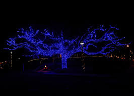 Professional Christmas Lights Blog Outdoor Lighting Perspectives