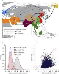 Duck Migration Map Plos Pathogens Ecosystem Interactions Underlie The Spread Of