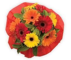 wedding flowers toowoomba organic florist toowoomba send flowers toowoomba same day