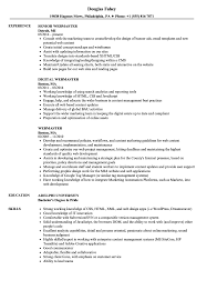 resume format sles for freshers download itunes excellent resume itunes movie rental download photos wordpress