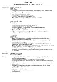 Webmaster Webmaster Resume Samples Velvet Jobs
