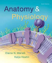 Principles Of Anatomy And Physiology Ebook Marieb U0026 Smith Human Anatomy U0026 Physiology Laboratory Manual