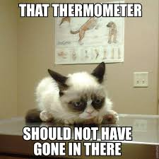 19 Best Grumpy Cat My - grumpy cat goes to the vets funny pictures quotes pics photos