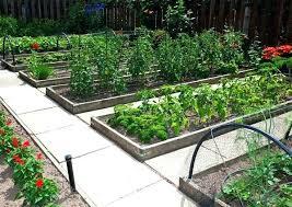 Veg Garden Layout Garden Layout Planner Free Vegetable Garden Planner Vegetable