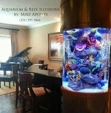 aquarium reef illusions home facebook