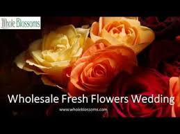 wholesale fresh flowers 8 best wholesale fresh flowers wedding www wholeblossoms