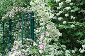 garden design garden design with r uamp a shortland exclusive