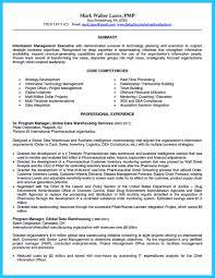 resume exles objective sales revenue equation cost bi manager resume therpgmovie