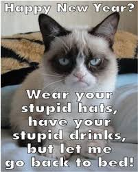 Happy New Year Cat Meme - pin by fun holiday cats on happy new year cats pinterest grumpy