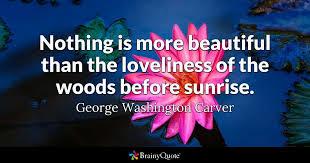george washington carver quotes brainyquote