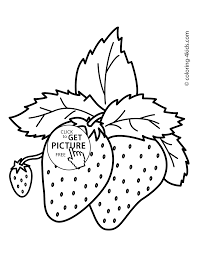 nice strawberries fruits coloring pages simple for kids printable