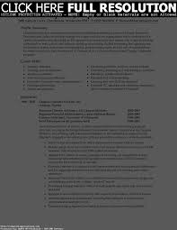 Job Resume Summary Examples by Job Resume Summary Resume For Your Job Application