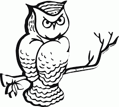 cute owl whose eyes bulged coloring page owl coloring pages