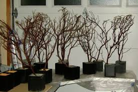 tree branch centerpieces branch centerpieces picmia