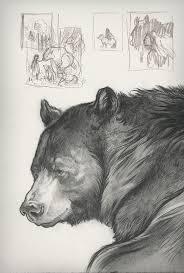 25 beautiful bear sketch ideas on pinterest bear drawing bear