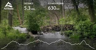 rhode island forest images Diamond hill mountain bike trail rhode island alltrails jpg