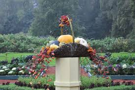 cura giardino giardini giardinaggio curare giardino