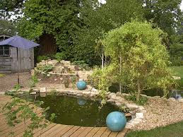 aquarium and pond installation maintainence and hire services