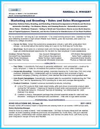 Sales Resume Example by If You Think Being Car Sales Is The Best Job You Must Prepare The