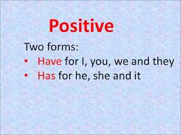 the verb have have is an auxiliary verb similar to be but it u0027s