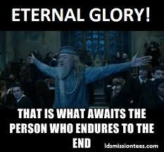 Anti Mormon Memes - anti mormon meme 36 best ideas about funny mormon culture on