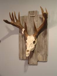 Skull Decorations For The Home Adding Wood Love The Character It Adds J Here Chad Truitt For