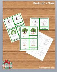 montessori tree printable free montessori printable parts of a tree montessori free and