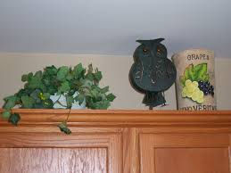 Owl Kitchen Canisters Used Kitchen Cabinets Ideas U2014 Decor Trends Plans To Build For