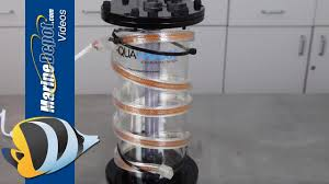 build an inexpensive macroalgae reactor to reduce nitrate and