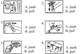 science for primary year 2 unit 8 exercises