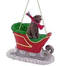 chocolate labrador retriever lab sleigh