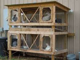 Metal Rabbit Hutch Rabbit Cage Raising Rabbits For Meat Pinterest Rabbit Cages