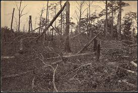 Battle of Pickett's Mill