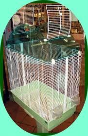 accessori per gabbie gabbia voliera per pappagalli con trespolo e supporto accessori